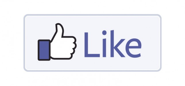 Facebook like button Facebook news feed